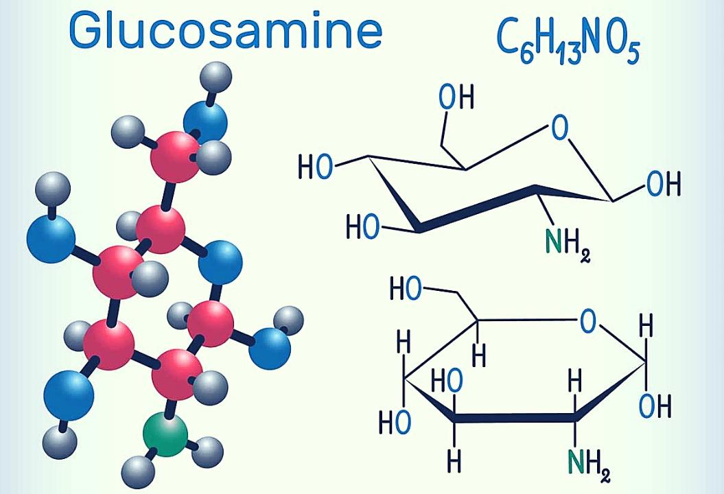 Препараты с глюкозамином для суставов