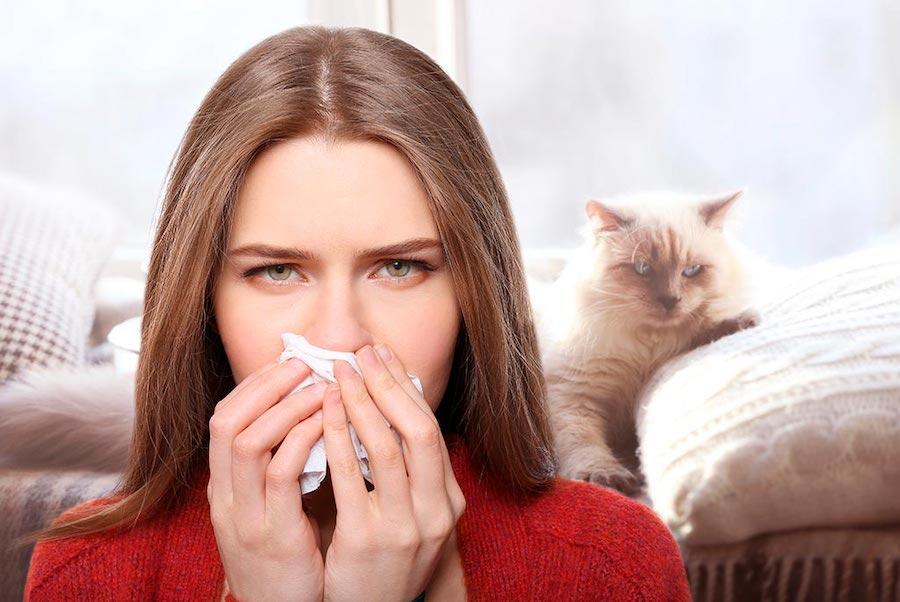 Средства лечения аллергии