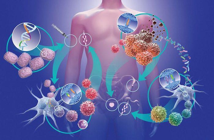 Ранняя диагностика и лечение рака