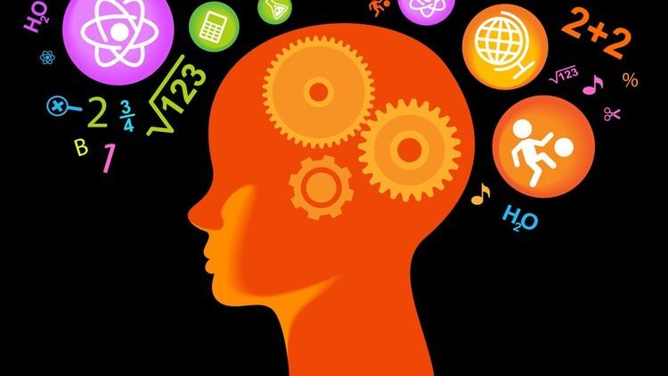 Питание для мозга и памяти