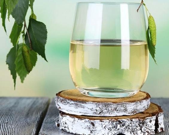 Полезные свойства и вкусовые качества березового сока позволяют его применять как общеукрепляющее средство и взрослым, и детям. Свежесобранный сок храниться до 2 суток в холодильнике, его можно замораживать и консервировать.